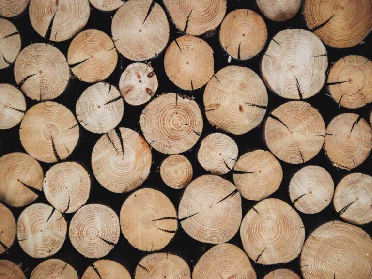 Holz ist knapp: Die Preise steigen und die Lieferungen verzögern sich.