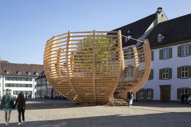Klaus Littmann: Arena für einen Baum